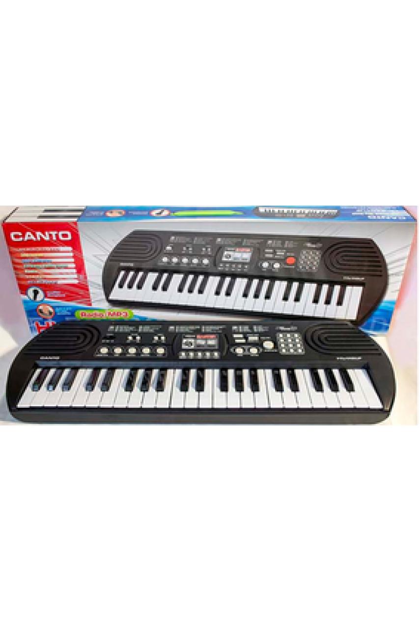 Детский синтезатор Canto 4401 с радио и USB